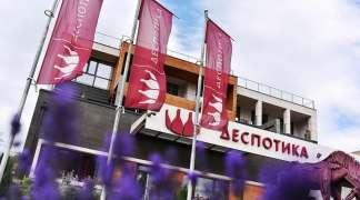 Despotika: Uzlet vinskog turizma