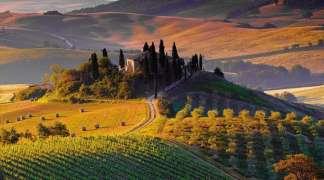 Želite da kupite vinariju u Italiji?