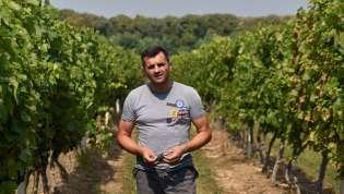 Aleksandar Vinčić Vinča: Vista Hill pravi tržišno zanimljiva vina