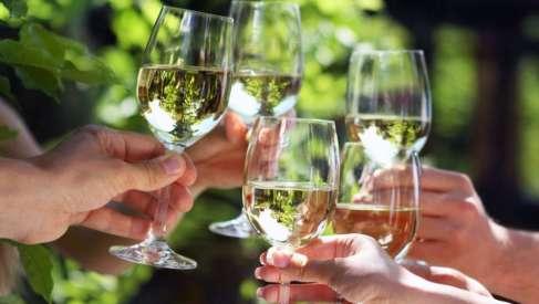 Bela vina Srbije za vrele dane