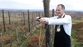 Na vinarskoj slavi u Trilogiji