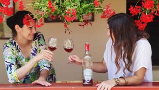 Velika zlata malih srpskih vinarija