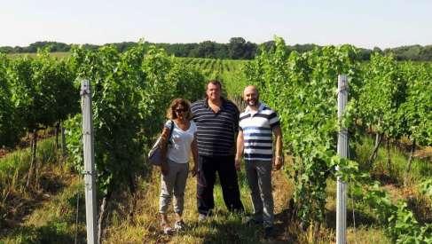Novi tim vinarije Trivanović